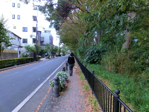 風の散歩道
