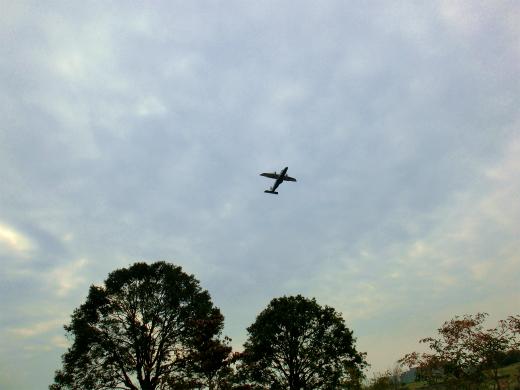 飛行機飛んだの