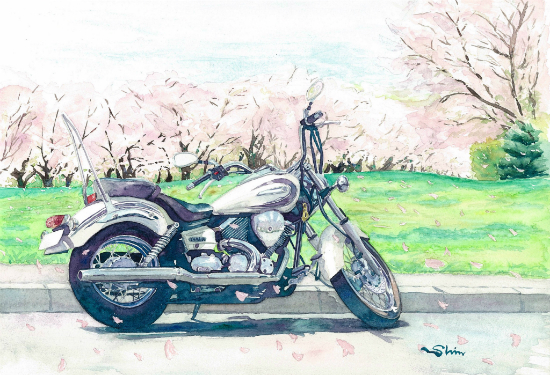 ドラッグスターと桜並木