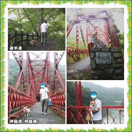 神龍湖(1)