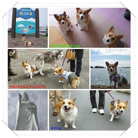 2011北海道旅行