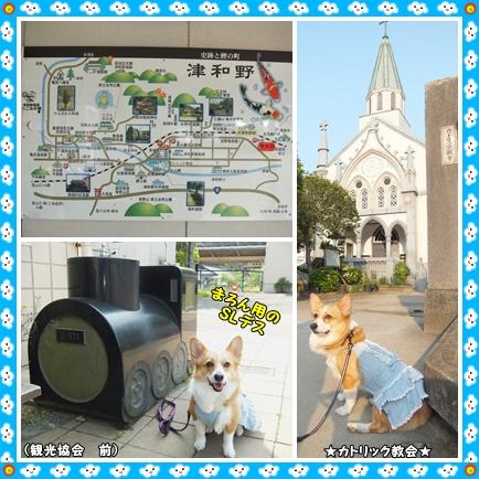 cats1_20120510233514.jpg