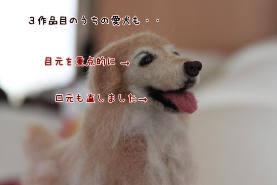 IMG_0036_R.jpg