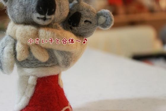 IMG_1513_R.jpg