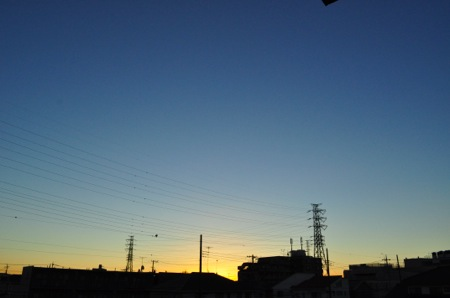 th_DSC_1261.jpg