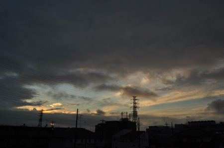 th_DSC_8209.jpg