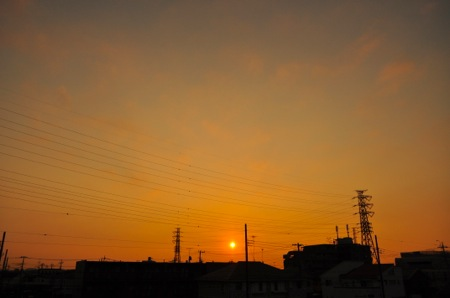 th_DSC_9872.jpg