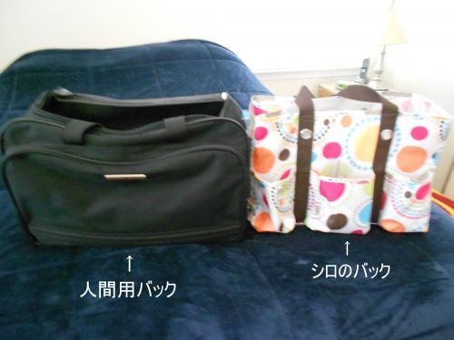 bag8.jpg
