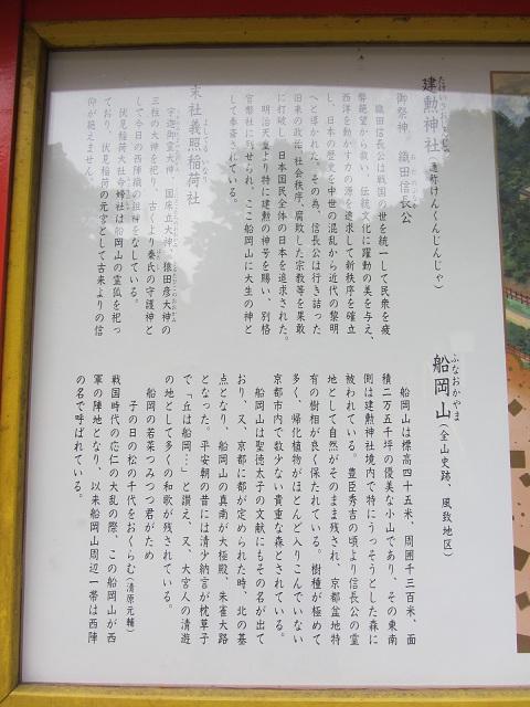 IMG_2800 C