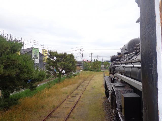 DSC02065_R.jpg