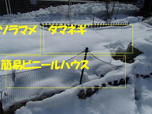 12_201402110731417a2.jpg