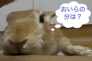 スクリーンショット(2012-11-22 17.28.51)