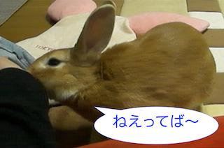 スクリーンショット(2012-11-26 19.22.02)