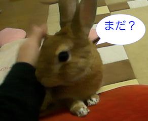 スクリーンショット(2012-11-26 19.20.42)