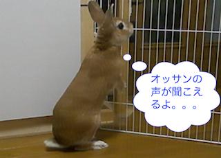 スクリーンショット(2012-11-26 19.17.52)