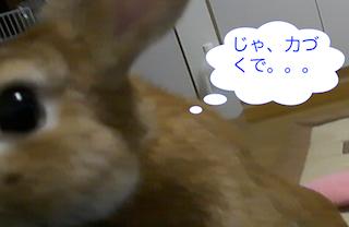 スクリーンショット(2012-11-26 20.46.56)