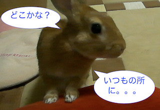 スクリーンショット(2012-11-26 19.22.46)