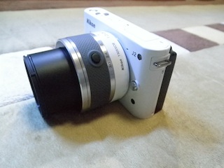 P1130034.jpg