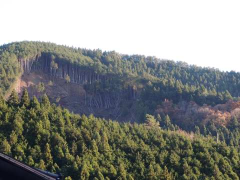 天河神社裏山の山崩れ