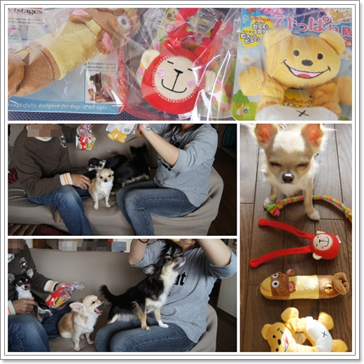 toshi&yokoからのプレゼント