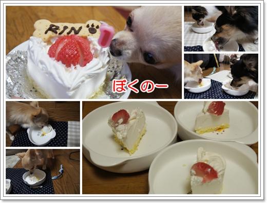 ケーキ最高~♪