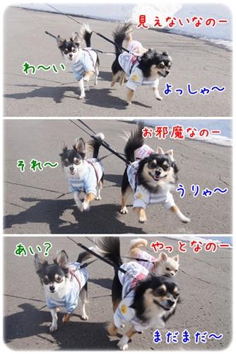 お散歩最高~~♪
