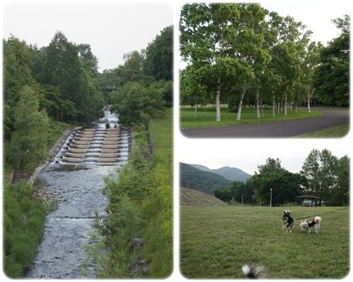 夕暮れの真駒内公園