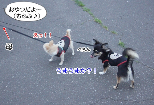 DSC05643.jpg