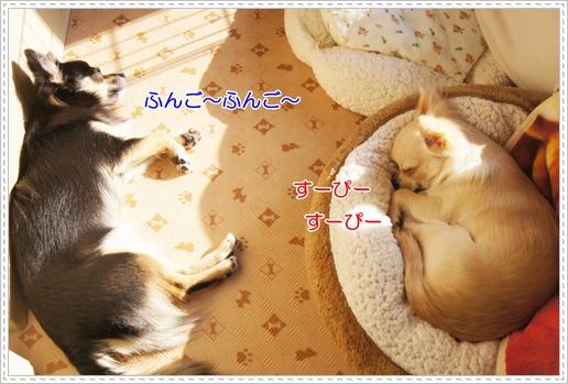 熟睡かよっ!!汗