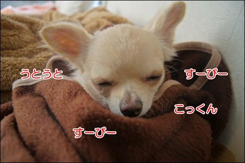眠いものは眠い!!