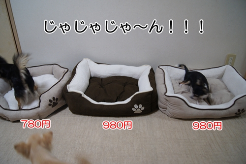 驚きのお値段!!!(笑)
