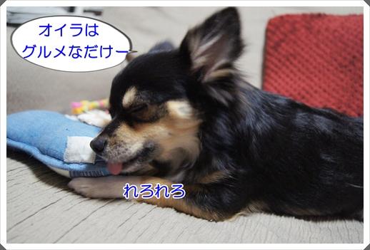 DSC09003.jpg