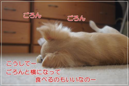 DSC09539.jpg