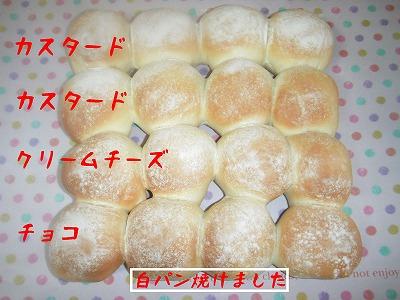 s-12_20130614192444.jpg