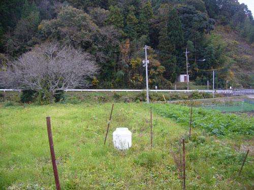 2012-11-10-3.jpg