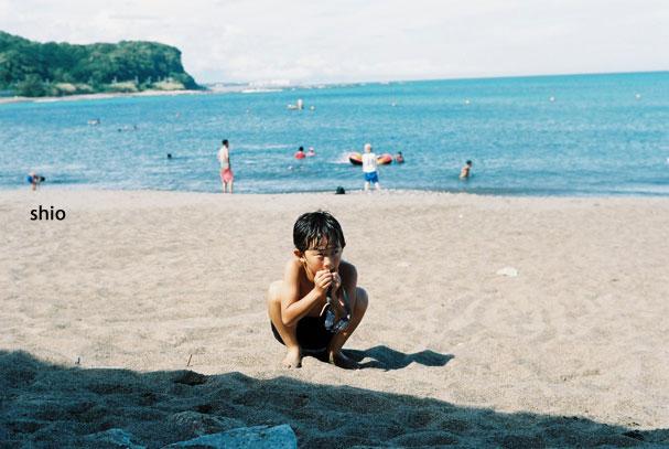 shio_海水浴a