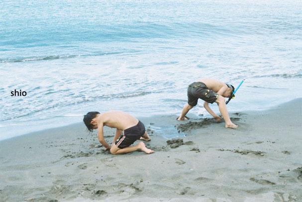 shio_泳ぐ
