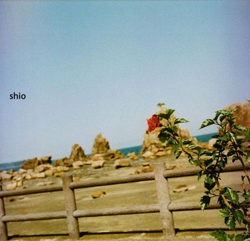 shio_yashica串本