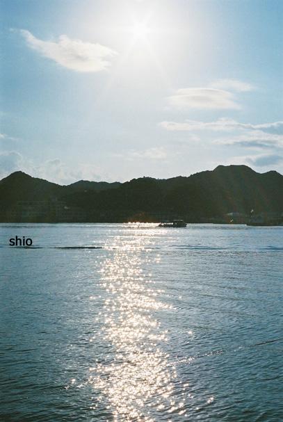 shio_海b