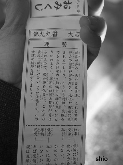 shio_おみくじb