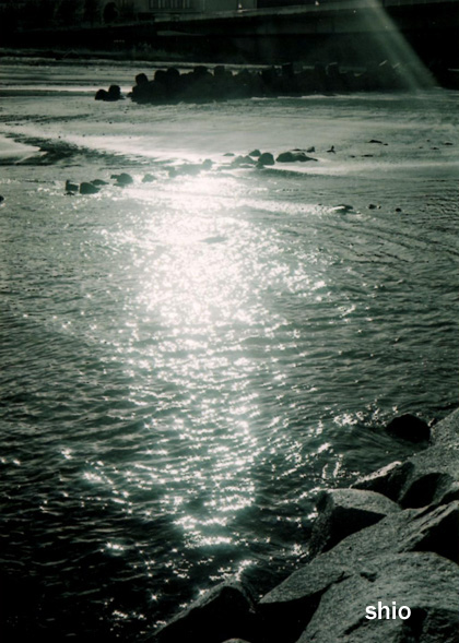 shio_海岸