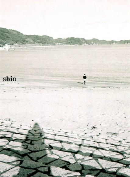 shio_浜辺