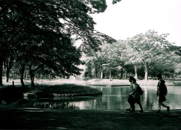 shio_代々木公園