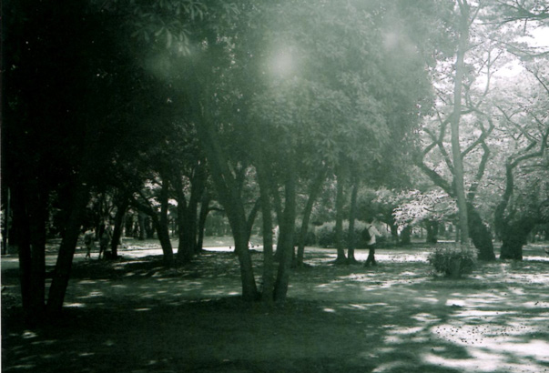 shio_代々木公園a