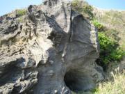 城ヶ島公園 岩場穴