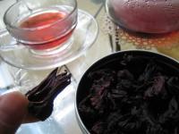 ハイビスカス茶花