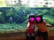 宇和島 水族館