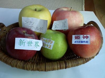 おいしいリンゴたち