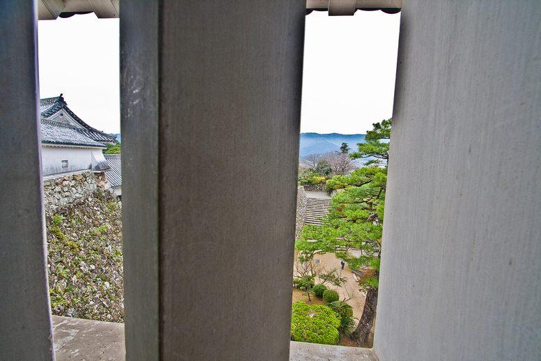 2011tensyukakudaiichi14 (1 - 1)