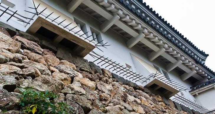 2012kouchitensyugaiken02 (1 - 1)